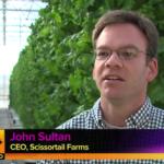 john sulton ceo Scissortail Farms Tulsa