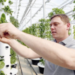 Scissortail Farms' futuristic setup brings quality herbs, greens to Tulsa